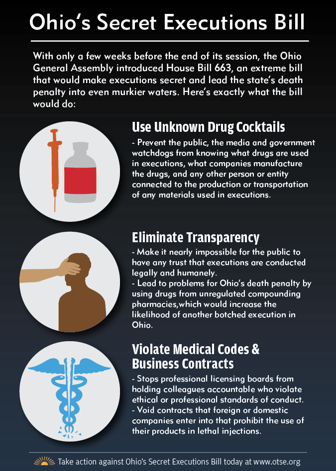 Secret Executions Bill Infographic